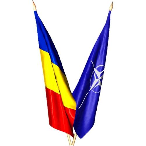 fanioane / steaguri