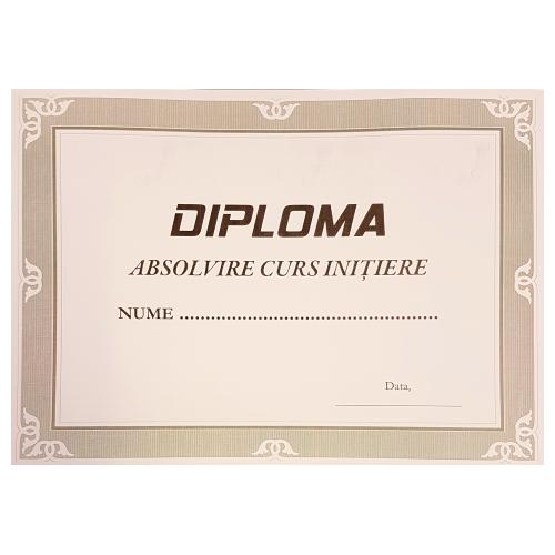 diploma-model-3