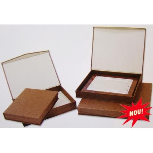 casete-speciale-din-carton